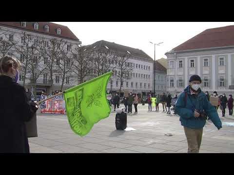 """Scientists4Future""-Regionalgruppe Kärnten bei Klimastreik am 19. März 2021"